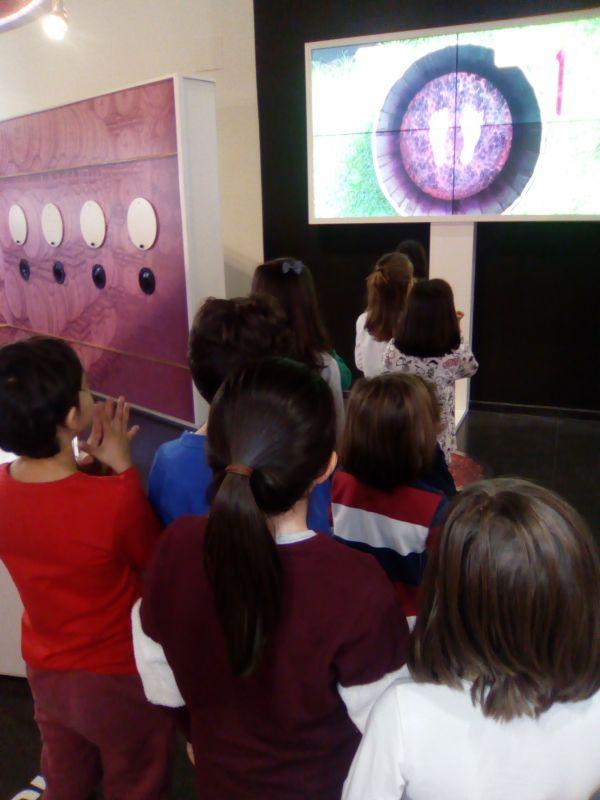Imagen Visita del Centro Joven Socuéllamos