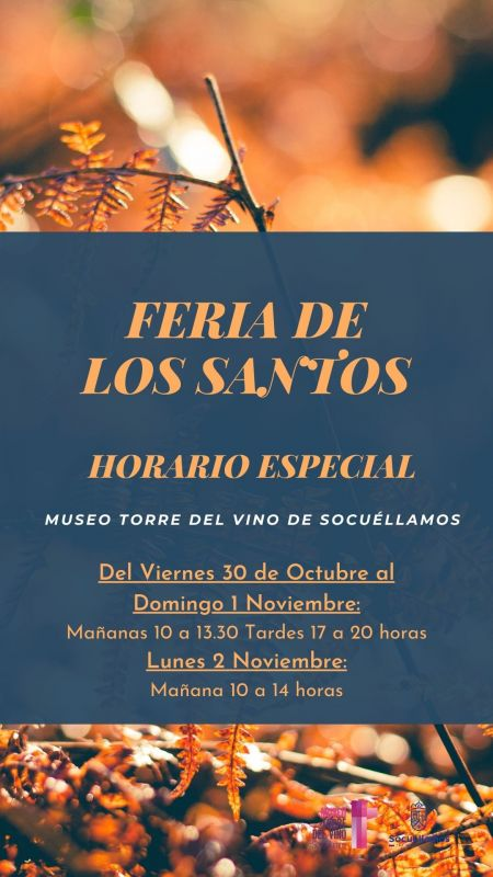 Imagen Horario Especial Feria de Los Santos